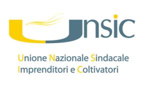 logo-unsic