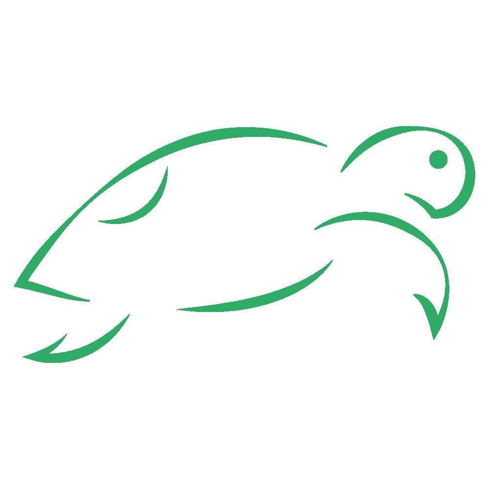 logo-koamed